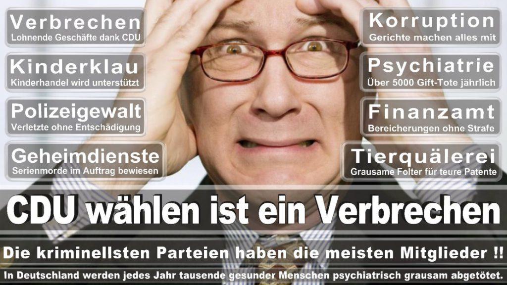 Wahlplakate-2017-CDU (202)