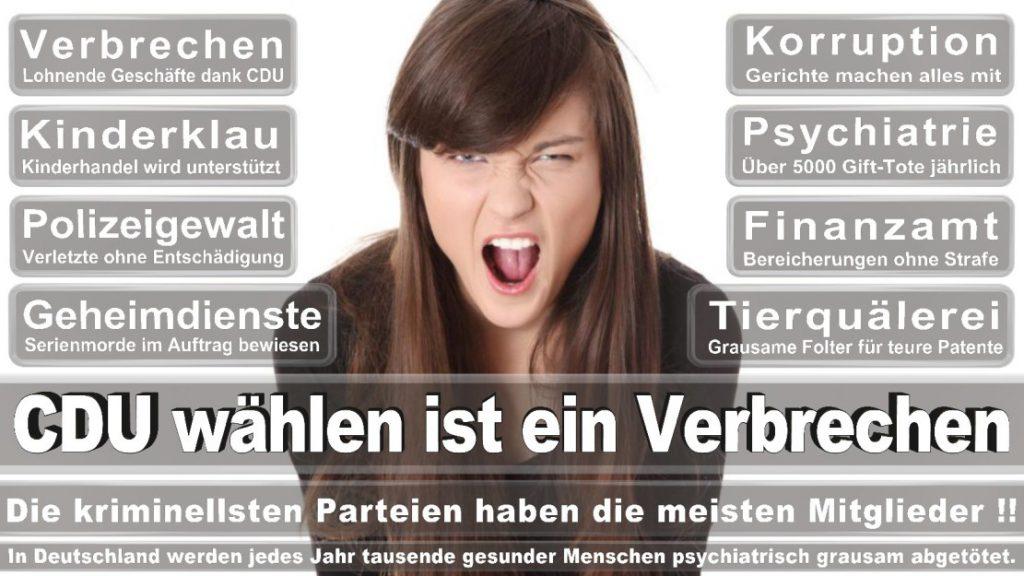 Wahlplakate-2017-CDU (203)