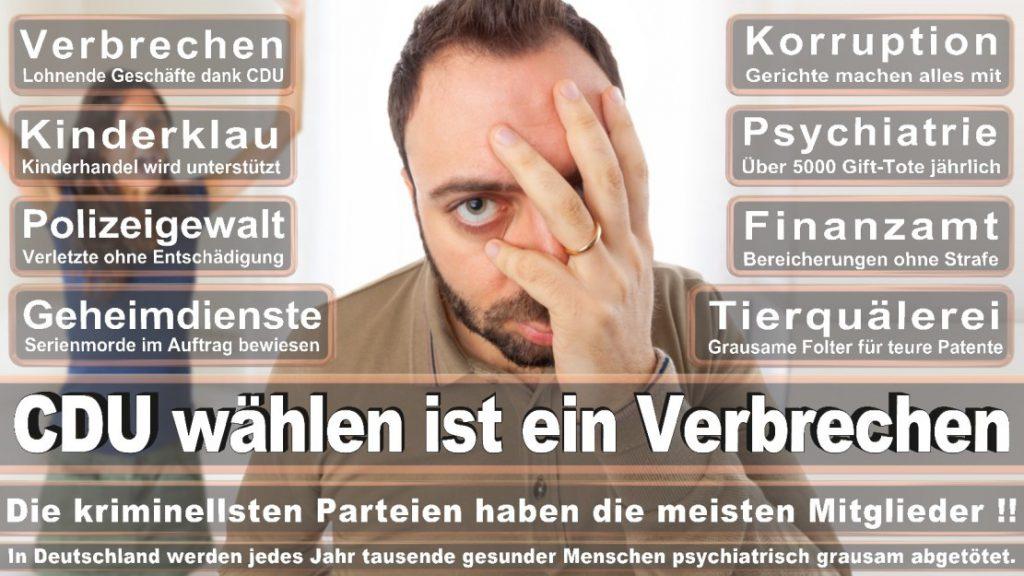 Wahlplakate-2017-CDU (204)