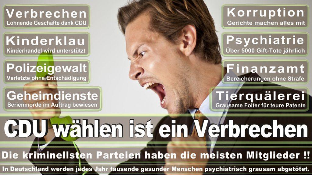 Wahlplakate-2017-CDU (205)
