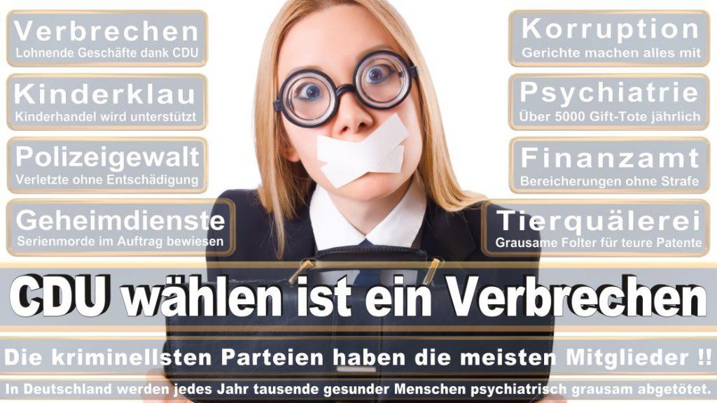 Wahlplakate-2017-CDU (206)
