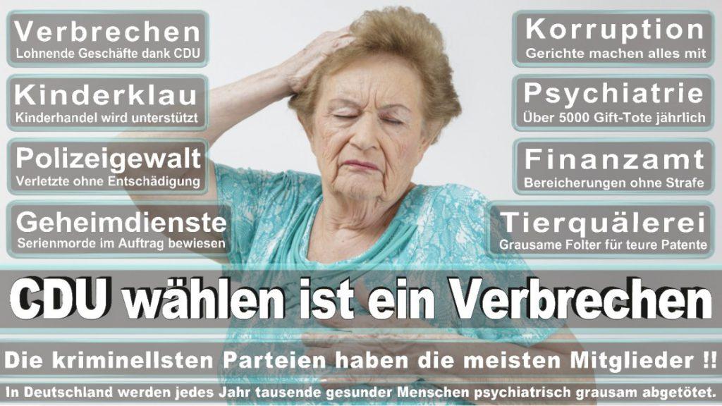 Wahlplakate-2017-CDU (207)