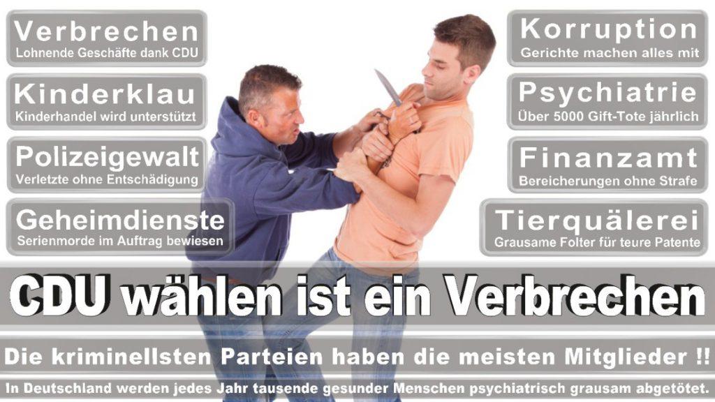 Wahlplakate-2017-CDU (208)