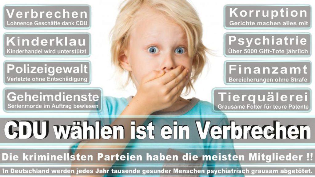 Wahlplakate-2017-CDU (209)