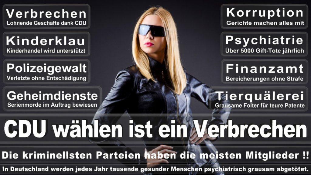 Wahlplakate-2017-CDU (21)