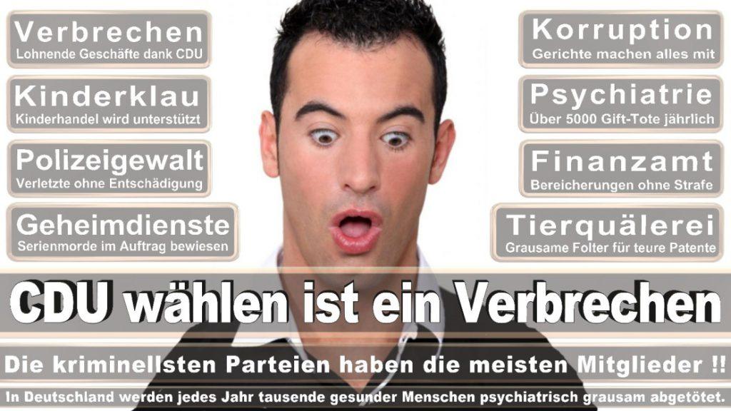 Wahlplakate-2017-CDU (211)