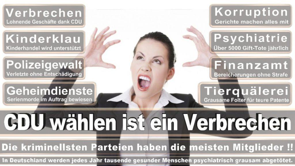 Wahlplakate-2017-CDU (212)