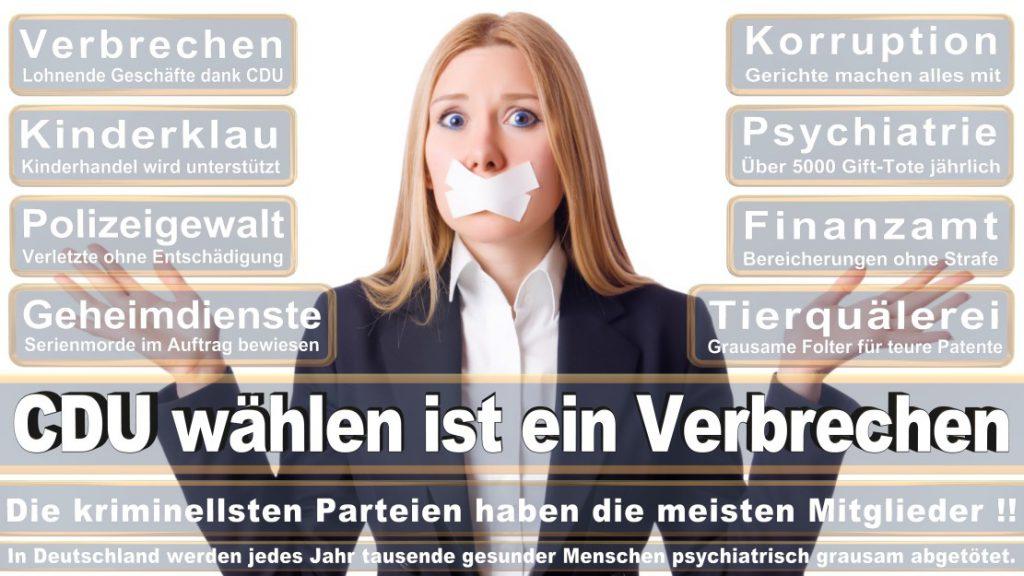 Wahlplakate-2017-CDU (214)
