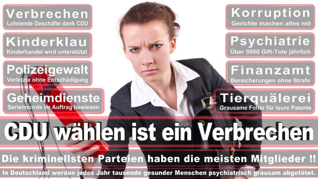 Wahlplakate-2017-CDU (215)
