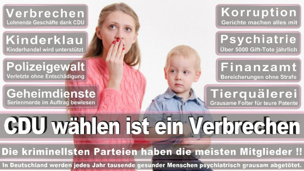 Wahlplakate-2017-CDU (216)