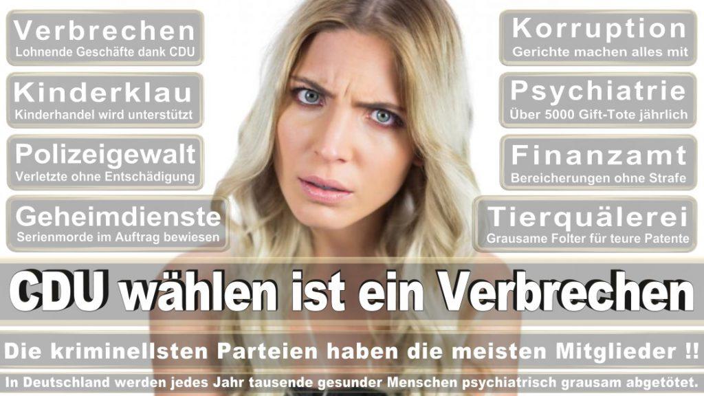 Wahlplakate-2017-CDU (217)