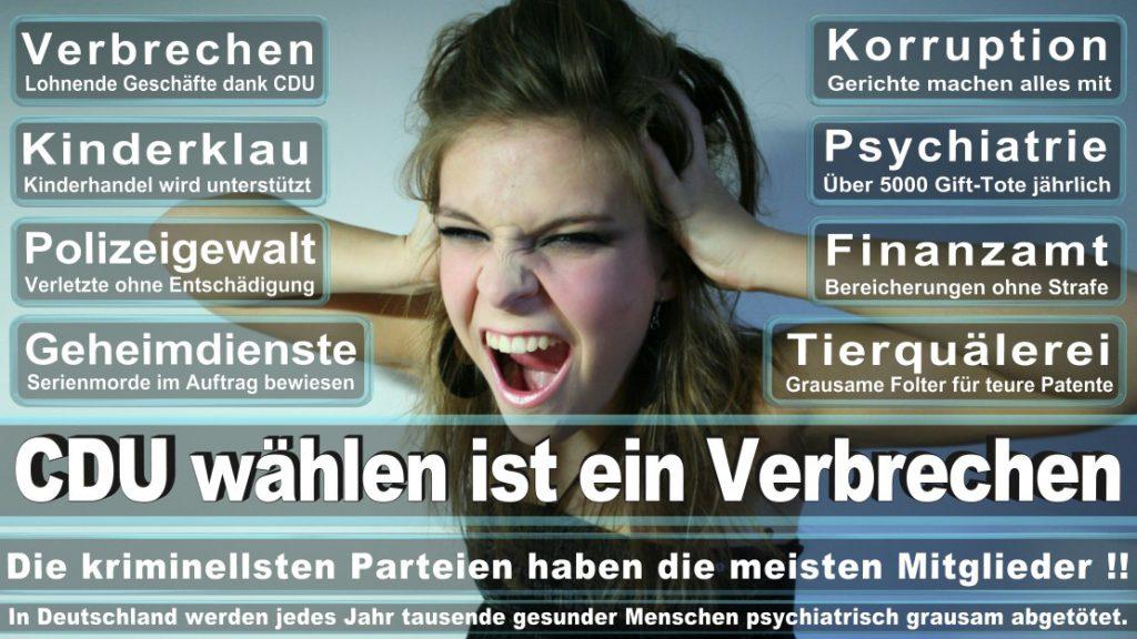 Wahlplakate-2017-CDU (218)