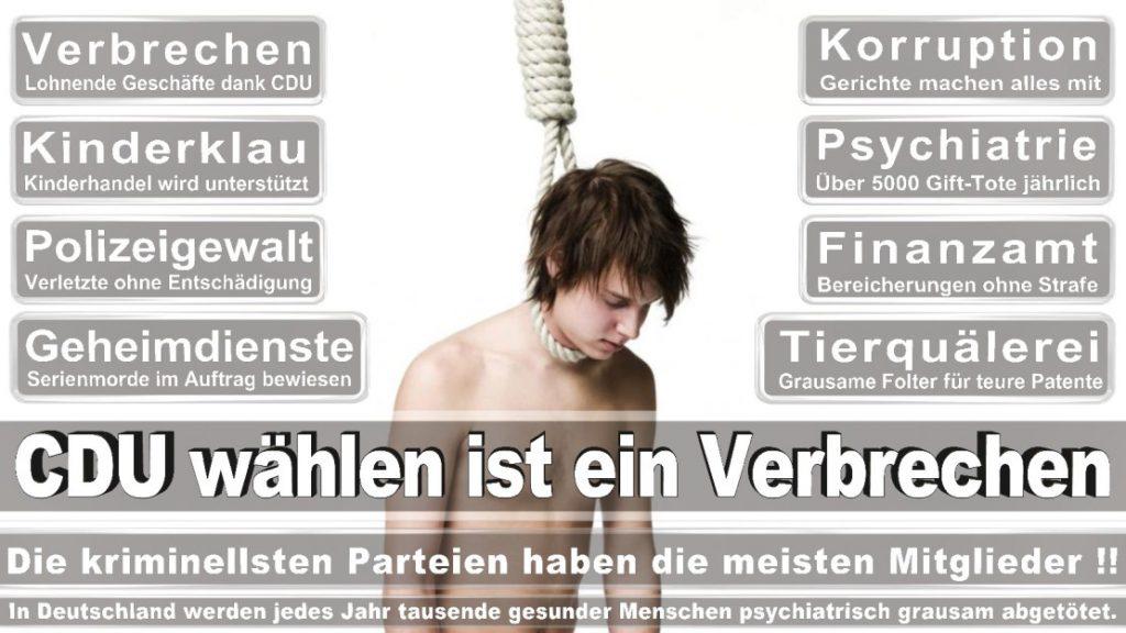 Wahlplakate-2017-CDU (219)