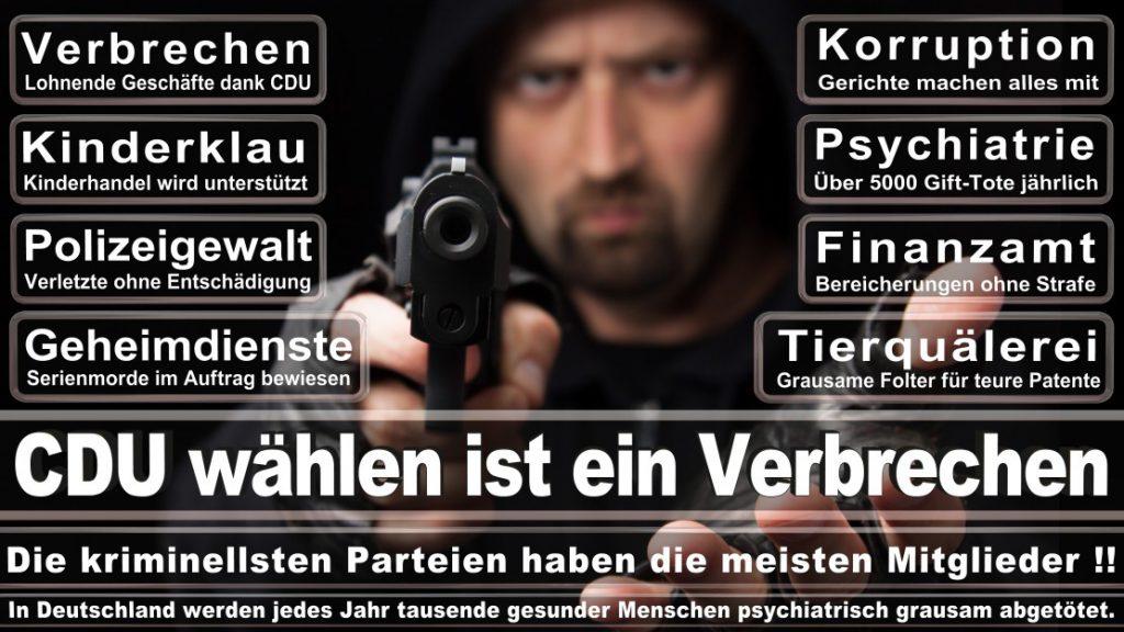 Wahlplakate-2017-CDU (22)