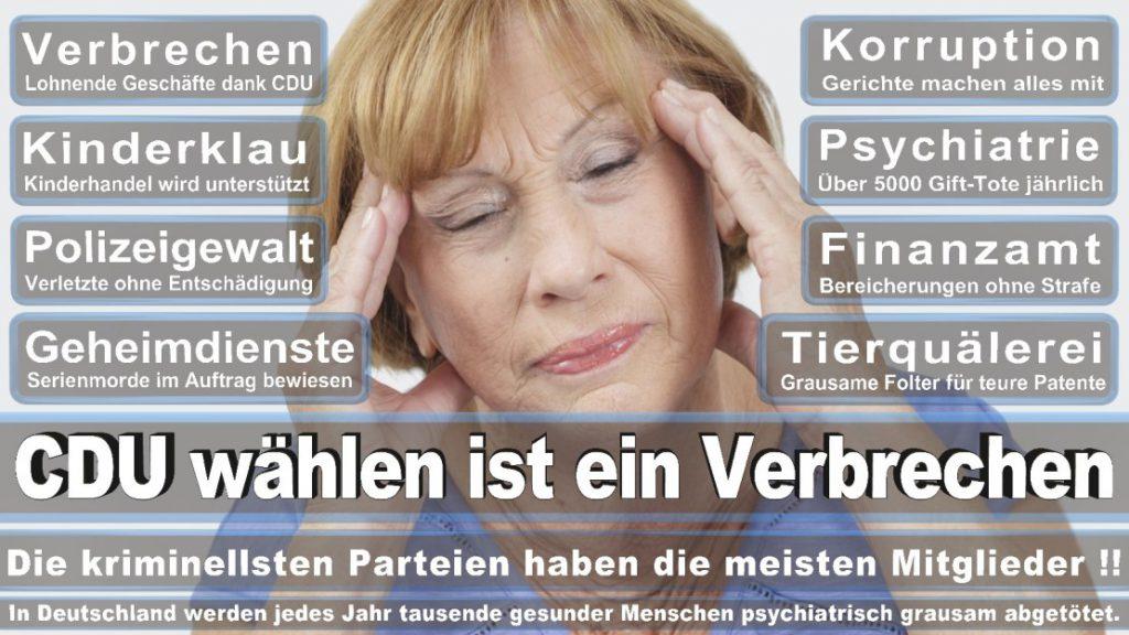 Wahlplakate-2017-CDU (220)