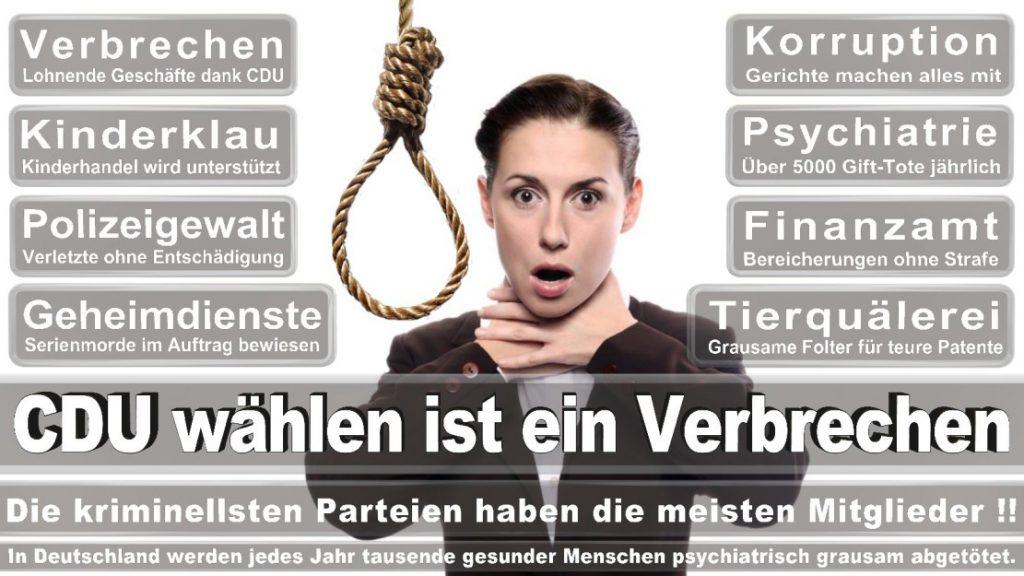 Wahlplakate-2017-CDU (221)