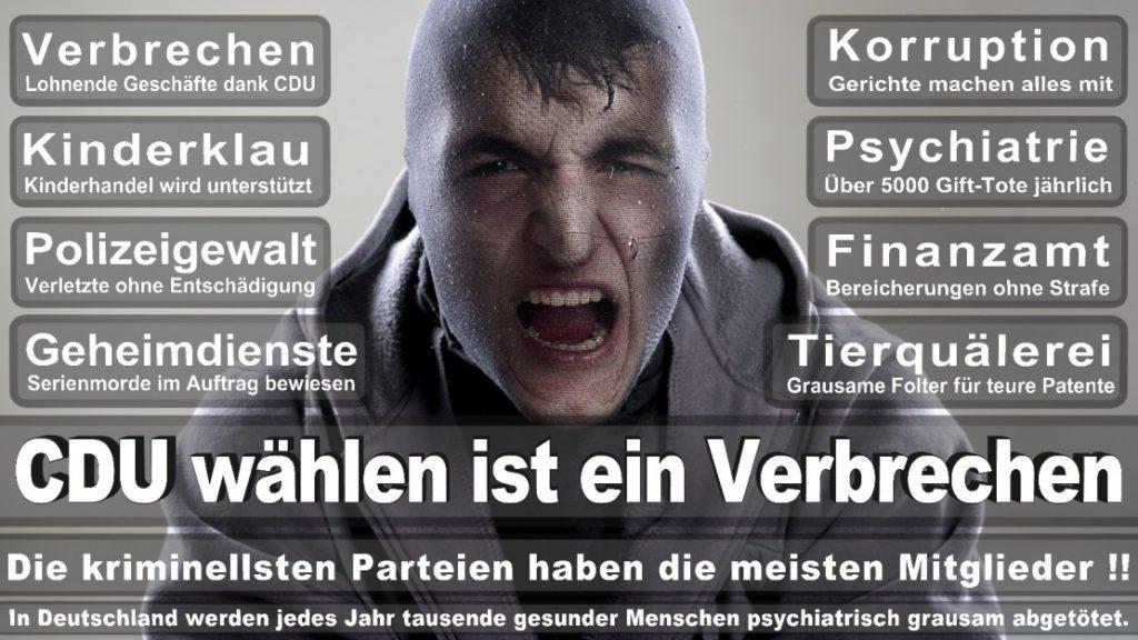 Wahlplakate-2017-CDU (222)