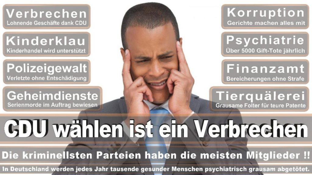 Wahlplakate-2017-CDU (223)