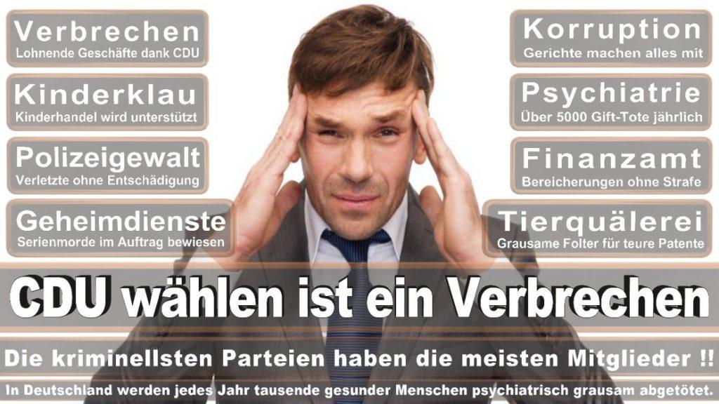 Wahlplakate-2017-CDU (224)