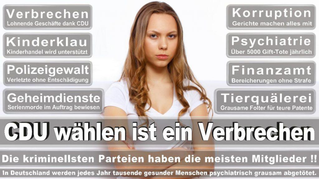 Wahlplakate-2017-CDU (225)