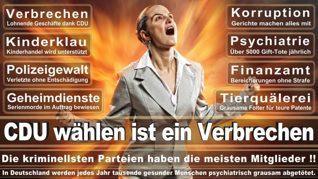 Wahlplakate-2017-CDU (226)