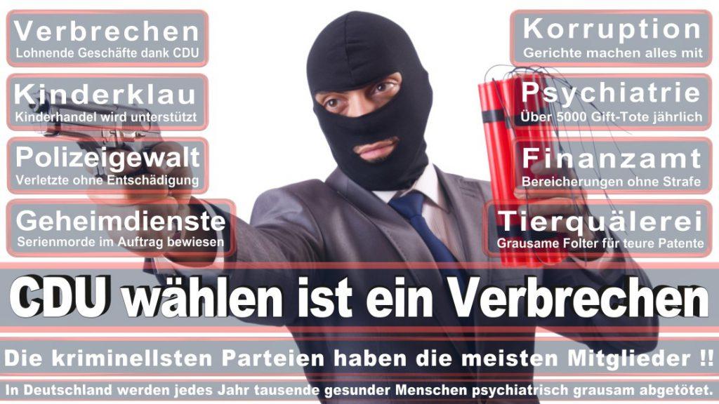 Wahlplakate-2017-CDU (227)