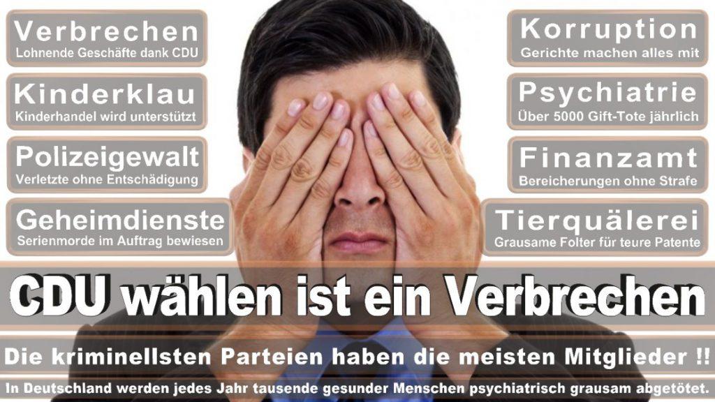 Wahlplakate-2017-CDU (228)
