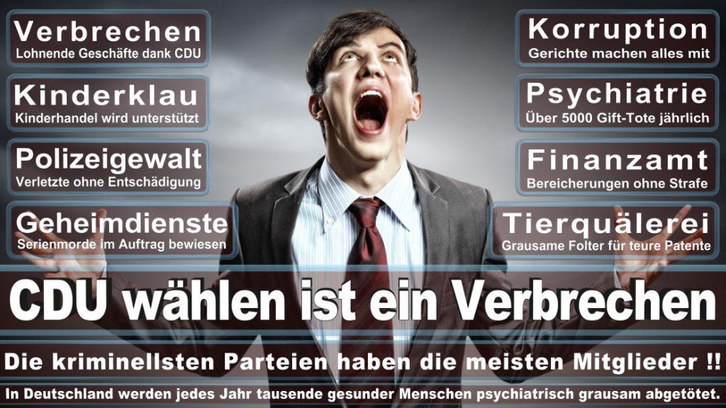 Wahlplakate-2017-CDU (230)