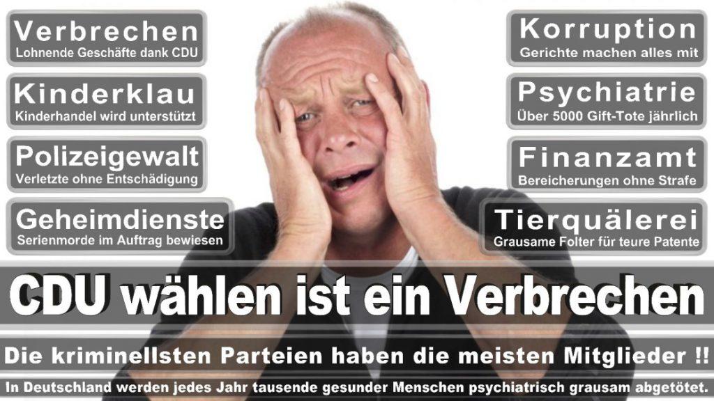 Wahlplakate-2017-CDU (231)
