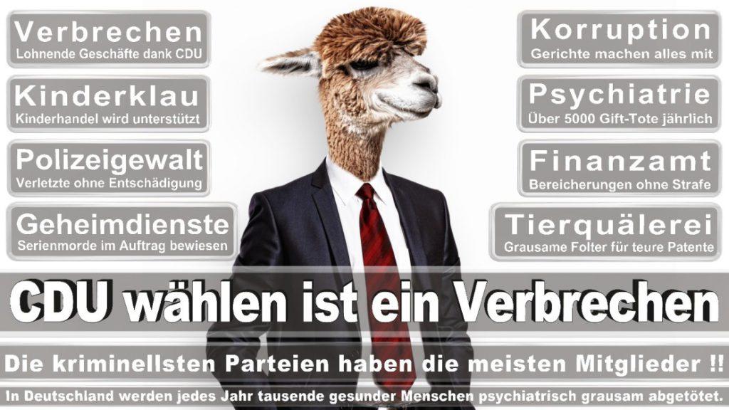 Wahlplakate-2017-CDU (232)