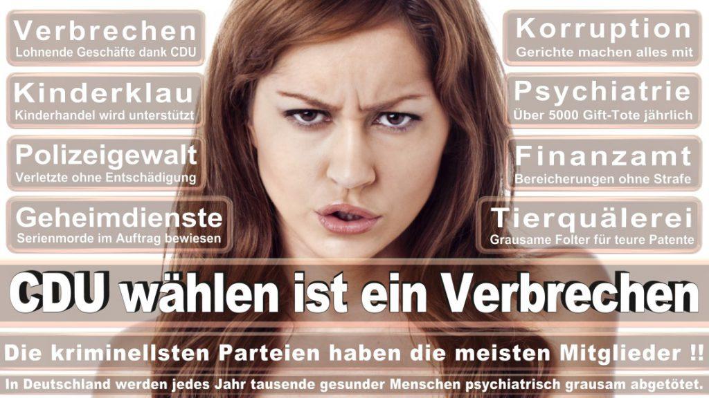 Wahlplakate-2017-CDU (233)