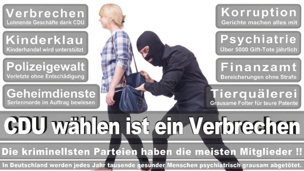 Wahlplakate-2017-CDU (234)
