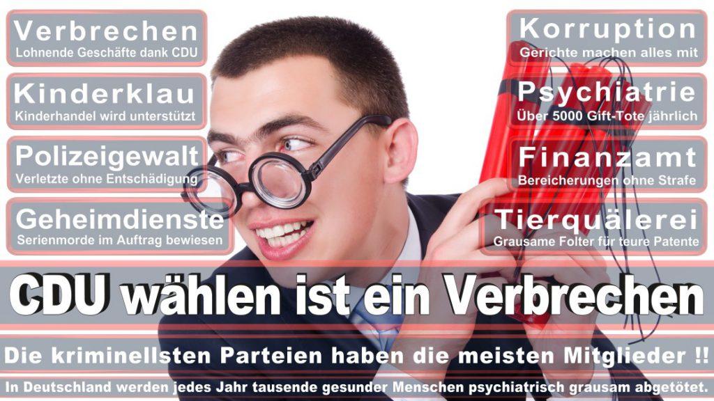 Wahlplakate-2017-CDU (235)