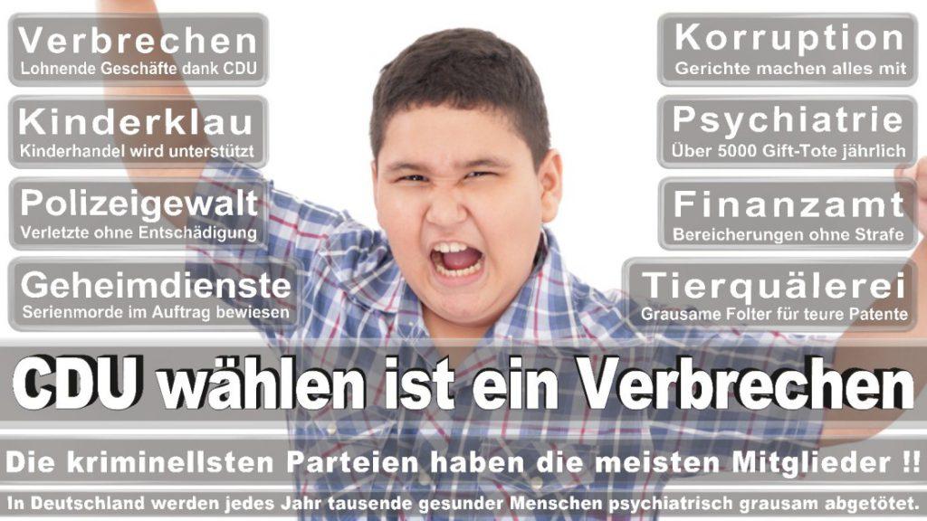 Wahlplakate-2017-CDU (236)