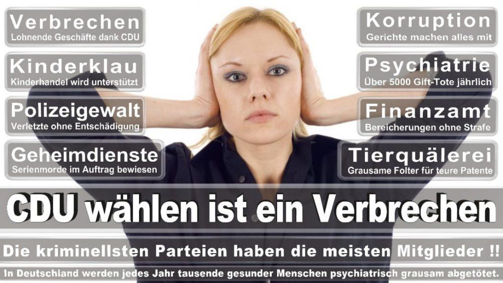 Wahlplakate-2017-CDU (237)