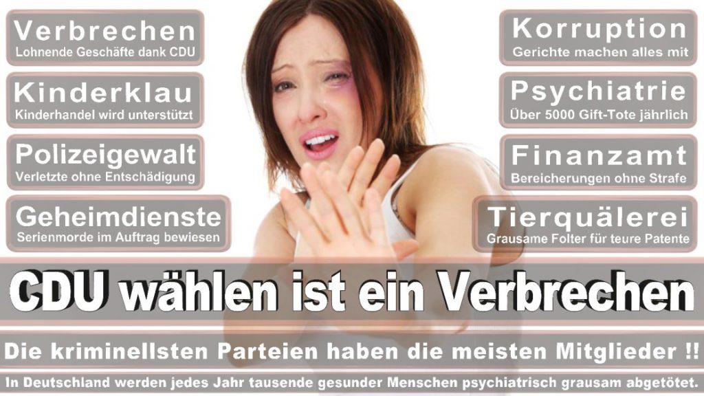 Wahlplakate-2017-CDU (239)