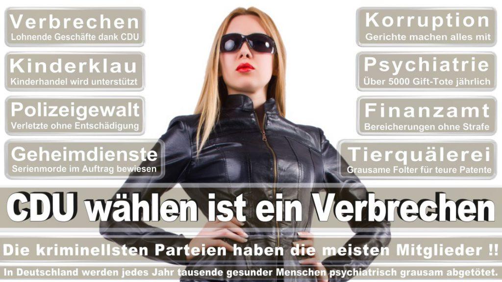 Wahlplakate-2017-CDU (24)
