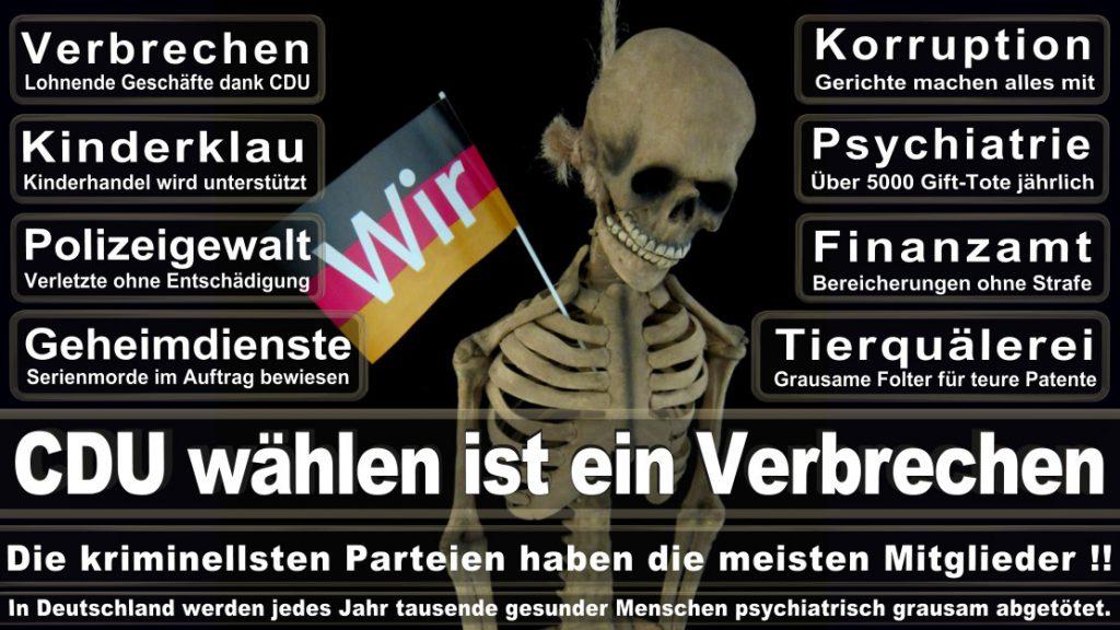 Wahlplakate-2017-CDU (240)