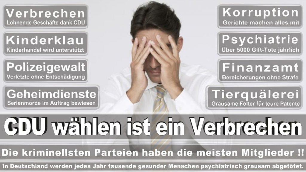 Wahlplakate-2017-CDU (241)