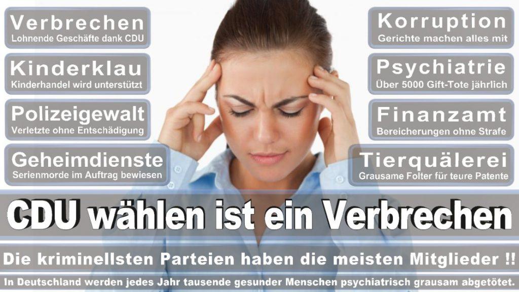 Wahlplakate-2017-CDU (243)