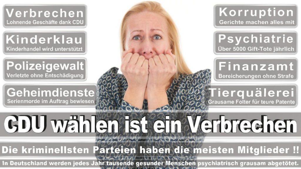 Wahlplakate-2017-CDU (244)