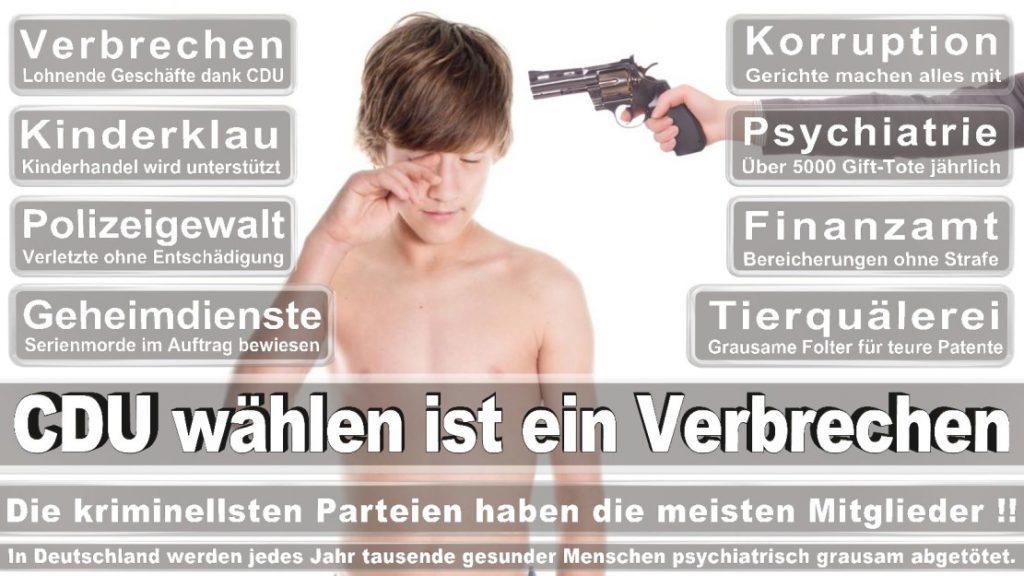 Wahlplakate-2017-CDU (247)