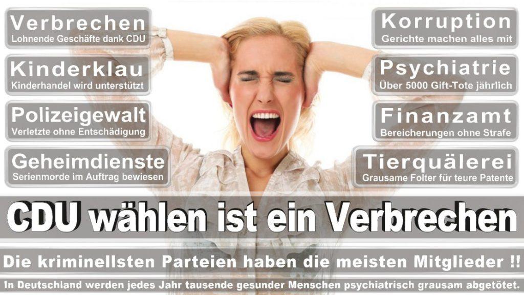 Wahlplakate-2017-CDU (248)