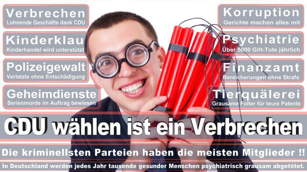 Wahlplakate-2017-CDU (249)