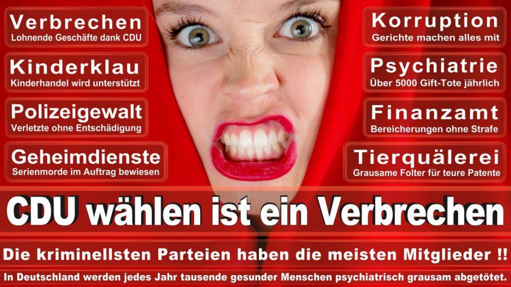 Wahlplakate-2017-CDU (25)