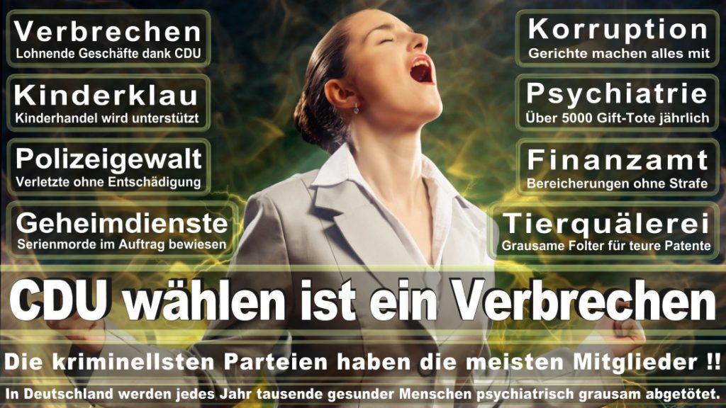 Wahlplakate-2017-CDU (250)