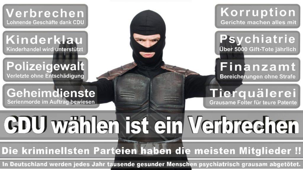 Wahlplakate-2017-CDU (251)