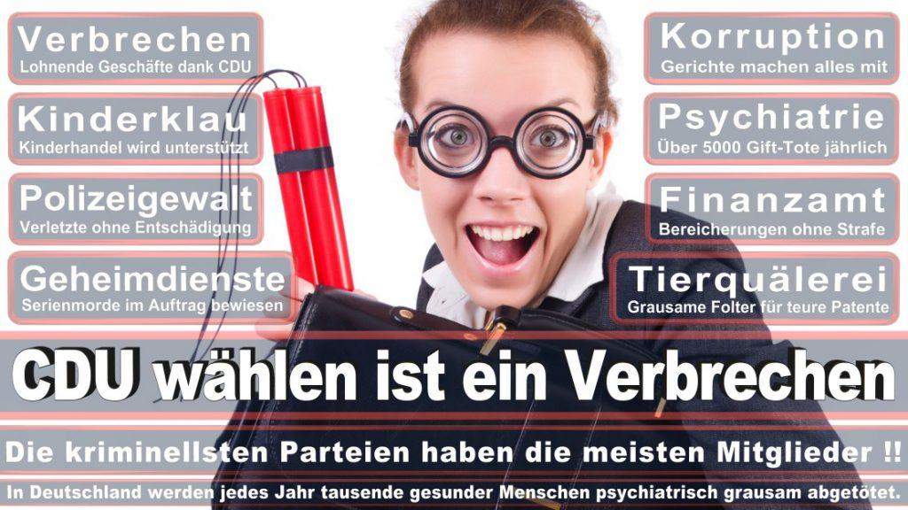 Wahlplakate-2017-CDU (252)