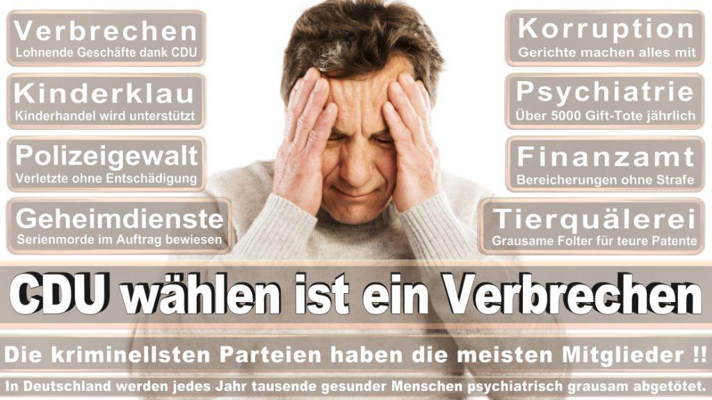 Wahlplakate-2017-CDU (253)