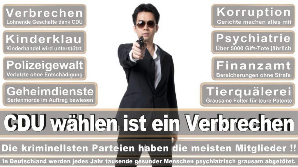 Wahlplakate-2017-CDU (254)